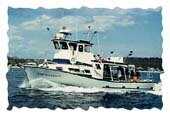 45 foot Cape Ann Divers Boat