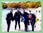 Guided Shore Diving